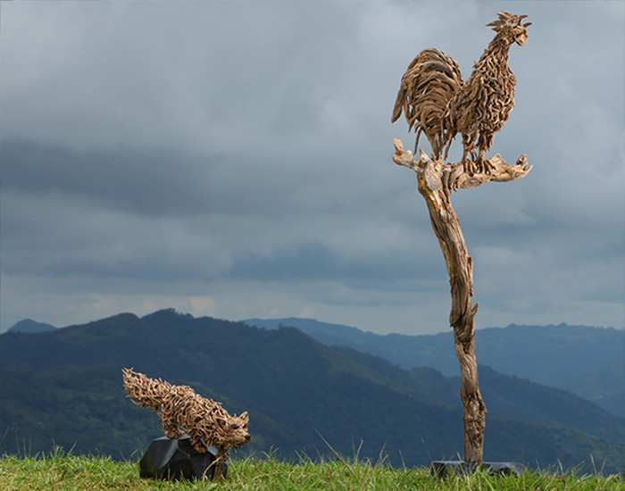 A driftwood and stainless steel sculpture of a rooster welcoming the dawn mounted on a polished stone base In the background a stalking fox called Stealth