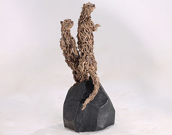 Long dead exceptional driftwood assembled on a stainless steel armature and mounted on a polished stone plinth Suitable for installation outdoors