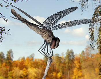 A Dragonfly made from long dead driftwood with stainless steel wings and legs Stainless steel runs through the sculpture all the way down through its long post to a subterranean base The piece is structurally very stable Suitable for outdoors Edition of 8