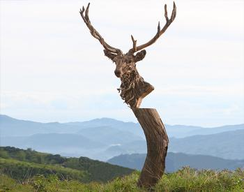 A driftwood and stainless steel sculpture of the head of an Emperor stag, mounted on a polished stone plinth