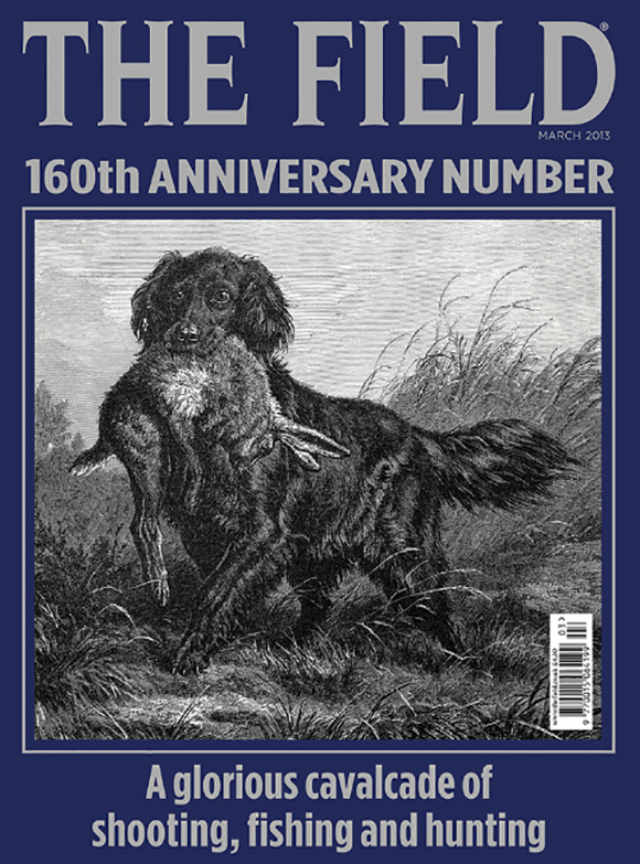The Field, 2013 March cover
